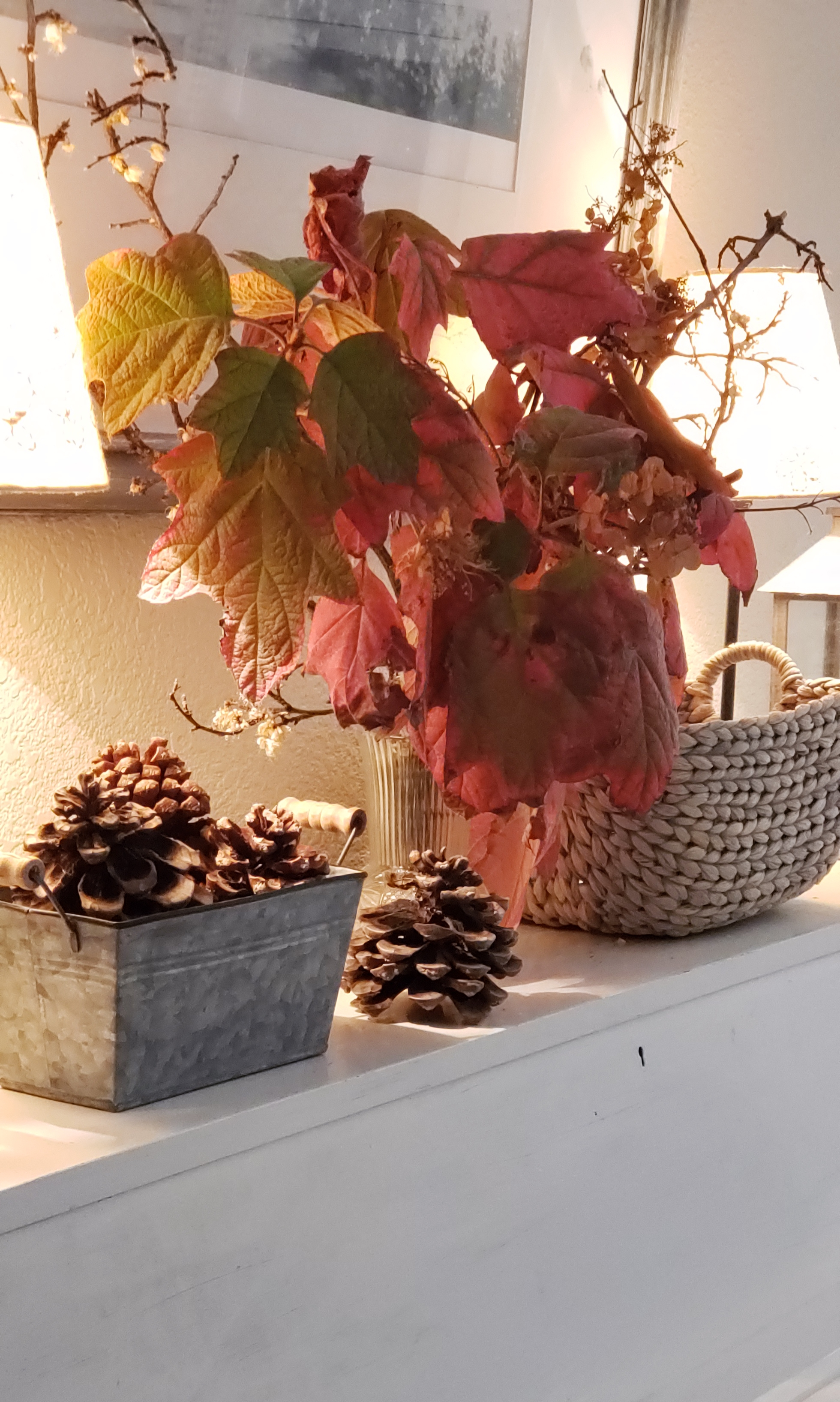 fall oakleaf hydrangea in vase
